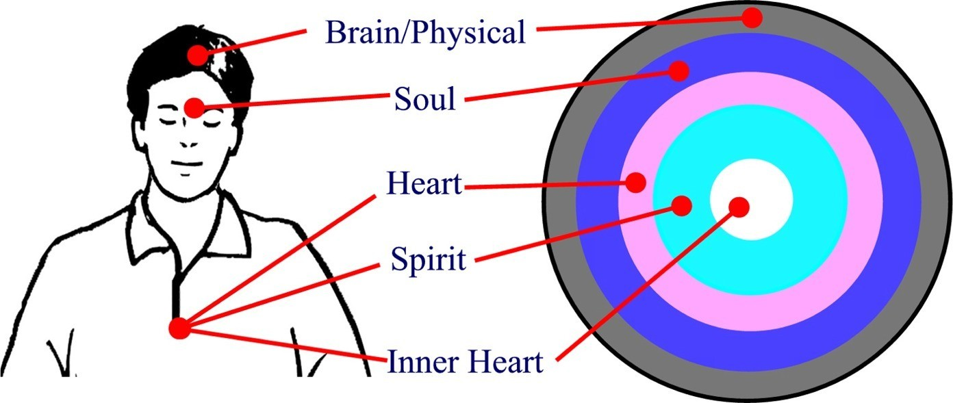 The 3 levels of human consciousness